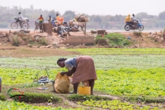 Woman gardening in front of a roadside vendor