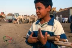 Boy holding knives at the Birqash Camel Market