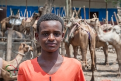 Portrait of a boy in front of camels