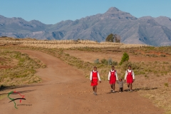 Children in school uniforms walking on the road