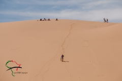 Tourists on sand dunes.