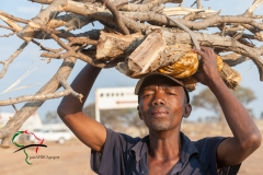 Man carrying firewood on his head