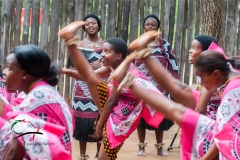 Tribal dance performance at Mantenga Swazi cultural village