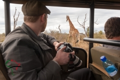 Photographer looking at a giraffe