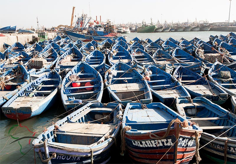 Boats docked in an Essaouira harbor